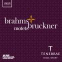 Brahms - Bruckner : Motets