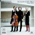 Schumann - Rihm : Trios avec piano