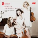 Röntgen : Trios pour cordes Vol.4