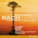 Bach : Cantates pour L'Éternité - Les Cantates sacrées Vol.7
