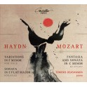 Haydn - Mozart : Oeuvres pour piano