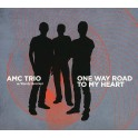 One Way Road To My Heart / AMC Trio w. Randy Brecker