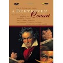 A Beethoven Concert