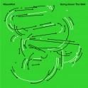 Going Down The Well / MoonMot (Vinyle LP)