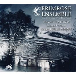 Ensemble à cordes où l'alto est roi / Primrose Ensemble
