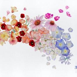 Flor / Gretchen Parlato