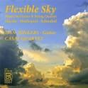 Flexible Sky, Musique pour guitare et quatuor à cordes