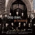 Drop Down, Ye Heavens : Antiennes de l'Avent pour choeur et saxophone