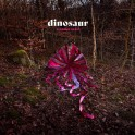 Wonder Trail / Dinosaur (Vinyle LP)