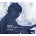 Franck - Litaize : Oeuvres pour orgue / Ae-Shelle Nam