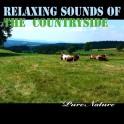 Musique Relaxante de la Campagne - Pure Nature