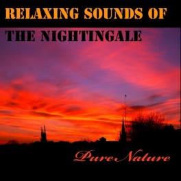 Musique Relaxante avec le Chant du Rossignol - Pure Nature