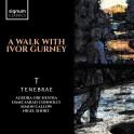 Une Promenade avec Ivor Gurney