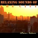 Musique Relaxante de la Ville - Pure Nature