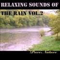 Musique Relaxante avec la Pluie Vol.2 - Pure Nature