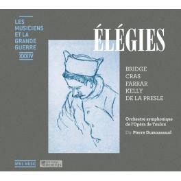 Les Musiciens et la Grande Guerre Vol.34 : Élégies