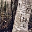 I Am Melancholy / Francisco Mañalich (Vinyle LP + CD inlcus)